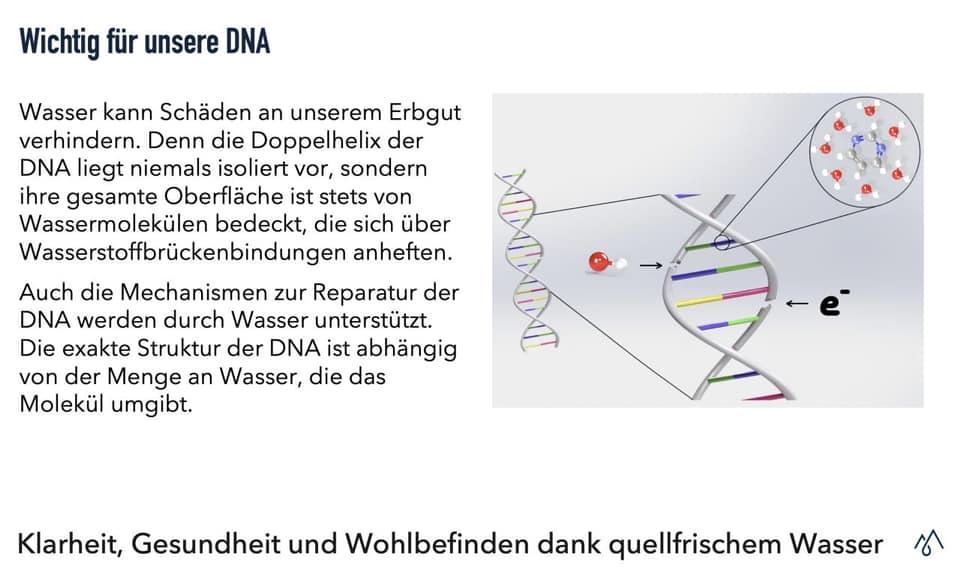 Wasser: Wichtig für unsere DNA